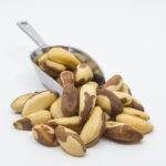 ΚΑΡΥΔΙ ΒΡΑΖΙΛΙΑΣ (BRAZILIAN NUTS)
